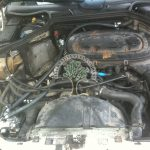 Mercedes TE230 motronic mechanical injection LPG Conversion
